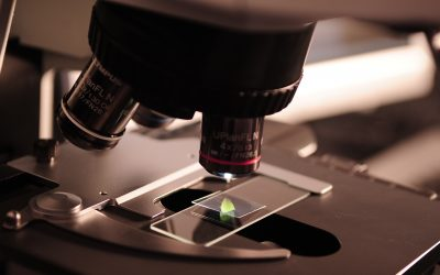 Noncoding RNA Has Unusual Effect on Immune Response