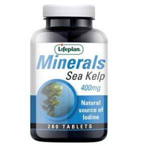 Sea Kelp 400mg - 280tablets