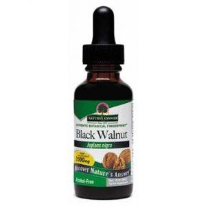 Black Walnut Hulls - 30ml