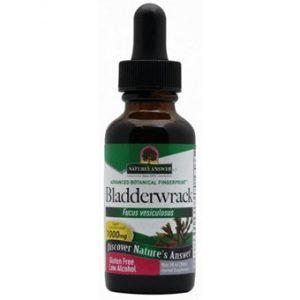 Bladderwrack Herb - 30ml
