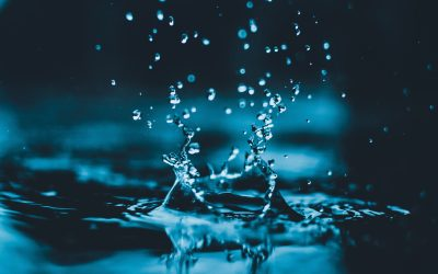 7 Easy Ways to Reconnect with Water (The Elixir of Life)